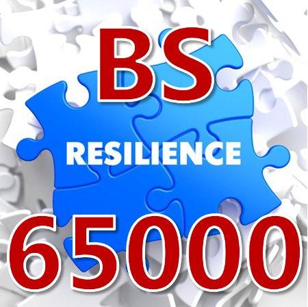 BS 65000 Guía para la Resiliencia Organizacional.